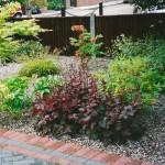 Low Maintenance Front Gravel Garden