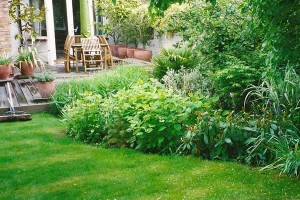 Garden Makeover Including Decking