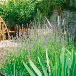 Delicate Planting alongside Structure