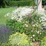Case Study Perennial Border - Final Result View 3