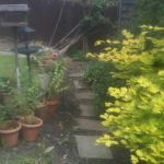 Case Study Small Garden Transformation - Before We Arrived